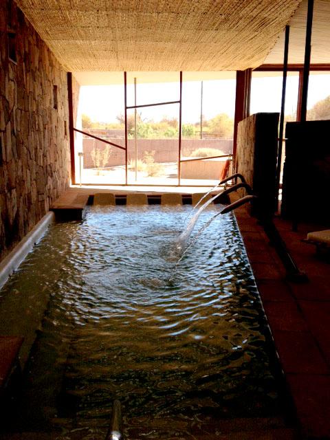 Aracari Trip Report on The Atacama Desert, Aracari Travel