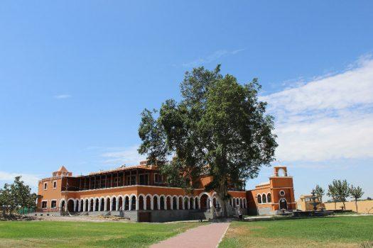 Visiting Hacienda La Caravedo Ica, Aracari Travel
