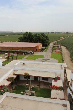 Tucked Away in the Vines: Las Viñas Queirolo Hotel in Ica, Aracari Travel