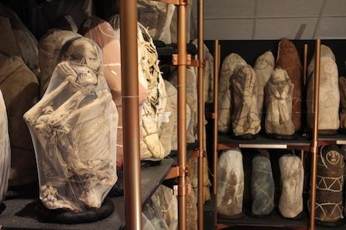 Chachapoyas Archaeology, Culture & Wildlife, Aracari Travel