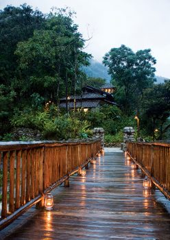 Luxury Meets Sustainability, Aracari Travel