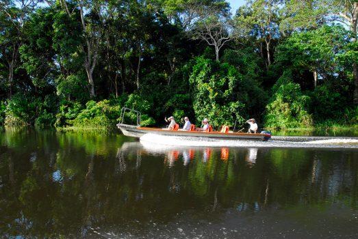 Luxury Amazon River Cruise with Delfin II, Aracari Travel