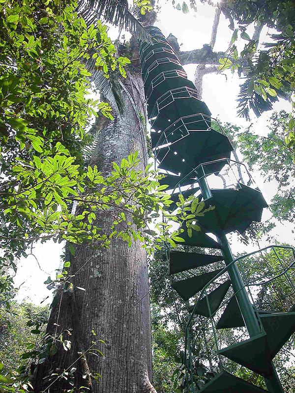 Manu Wildlife Center