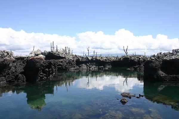 Galapagos-tierra