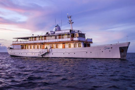 Grace Luxury Galapagos Cruise