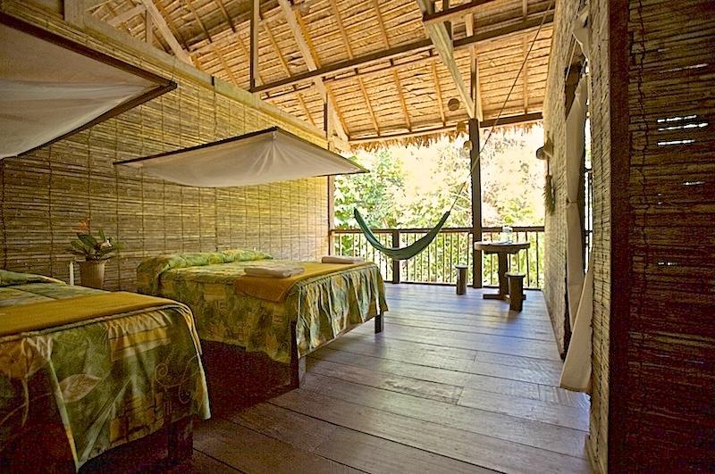Evenings in the Jungle with Posada Amazonas and Refugio Amazonas
