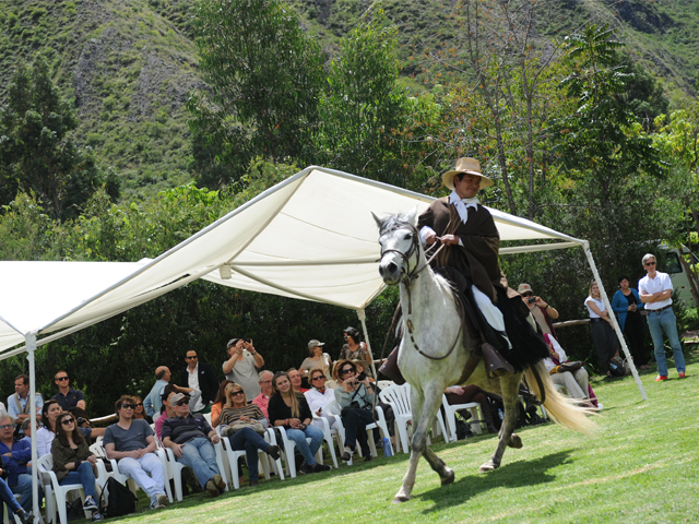 Events in Peru Horse paseo show
