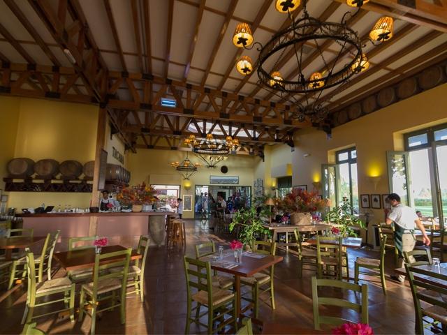 Hacienda Tacama – Wine and Pisco in Ica, Aracari Travel