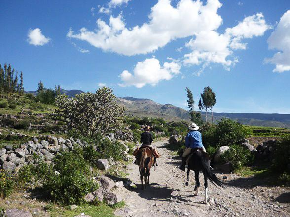 Exploring Colca Canyon in Peru, Aracari Travel