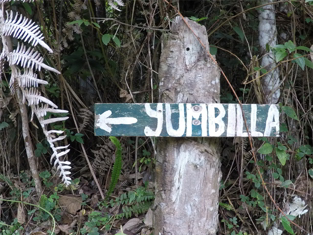 Yumbilla Waterfall Hike: A walk in the cloud forest