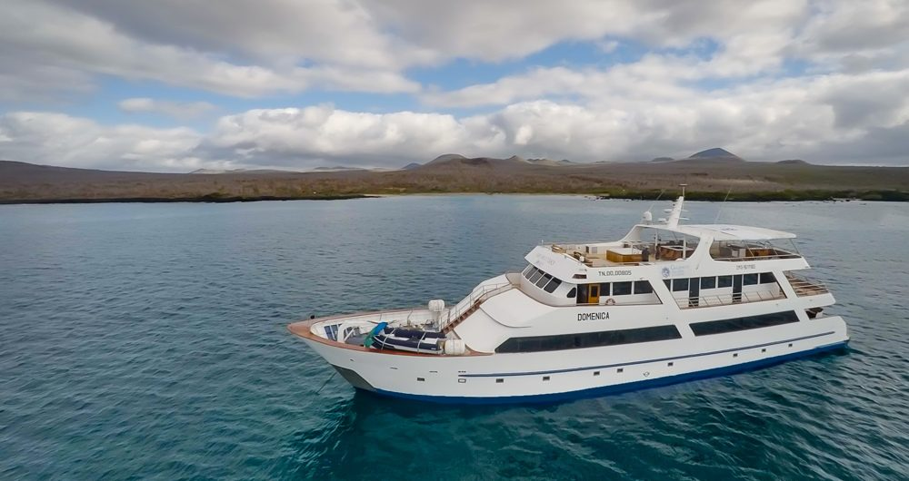 Galapagos Sea Star Journey: Cruise Review, Aracari Travel
