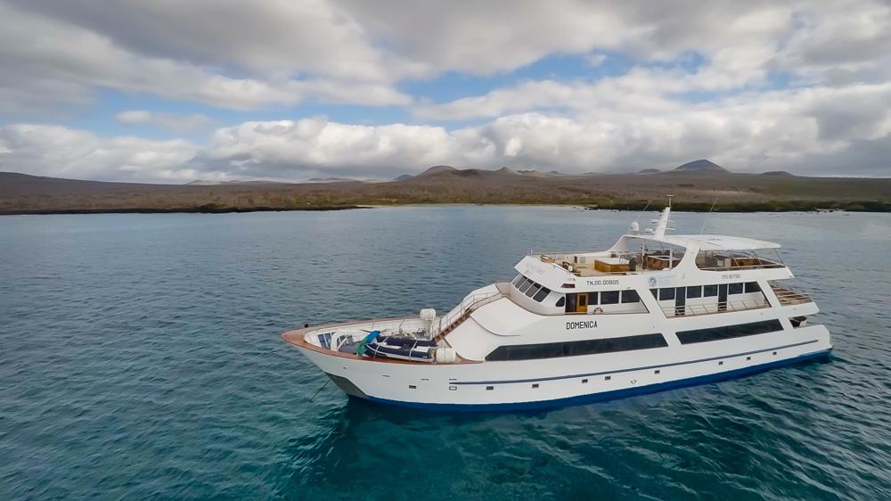 Galapagos Sea Star Journey