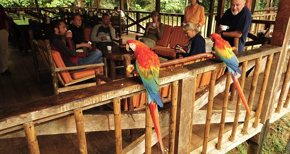 tambopata-research-center-wildlife luxury amazon lodge