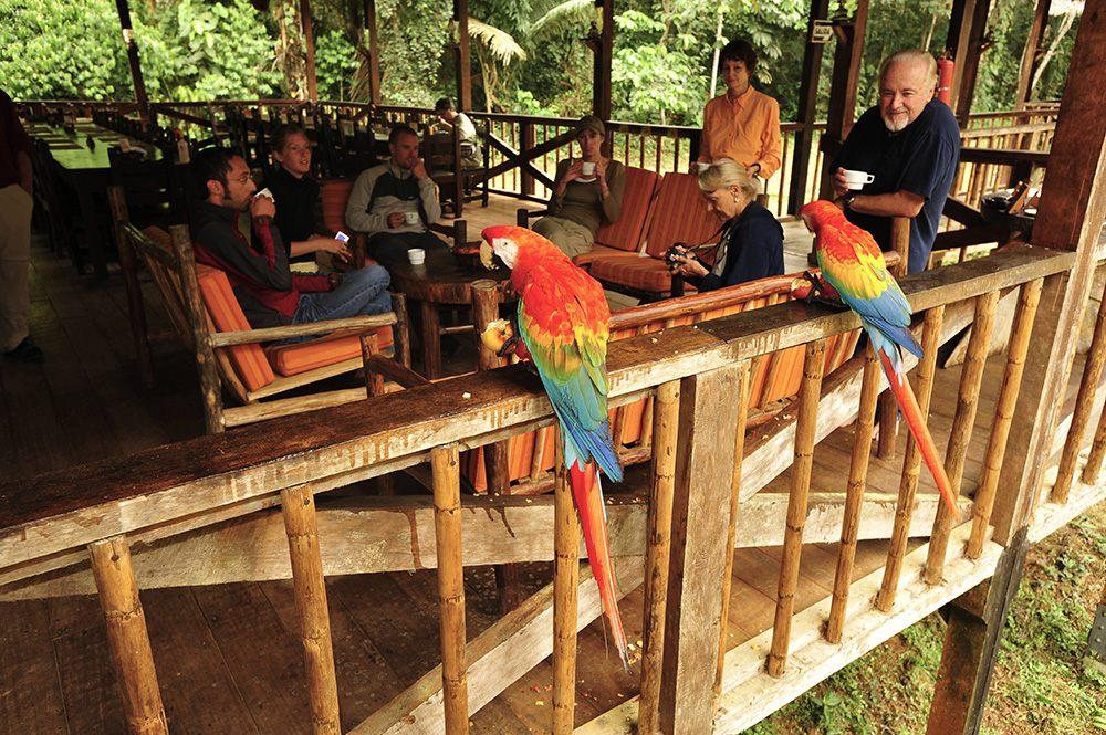tambopata-research-center-wildlife luxury amazon lodge