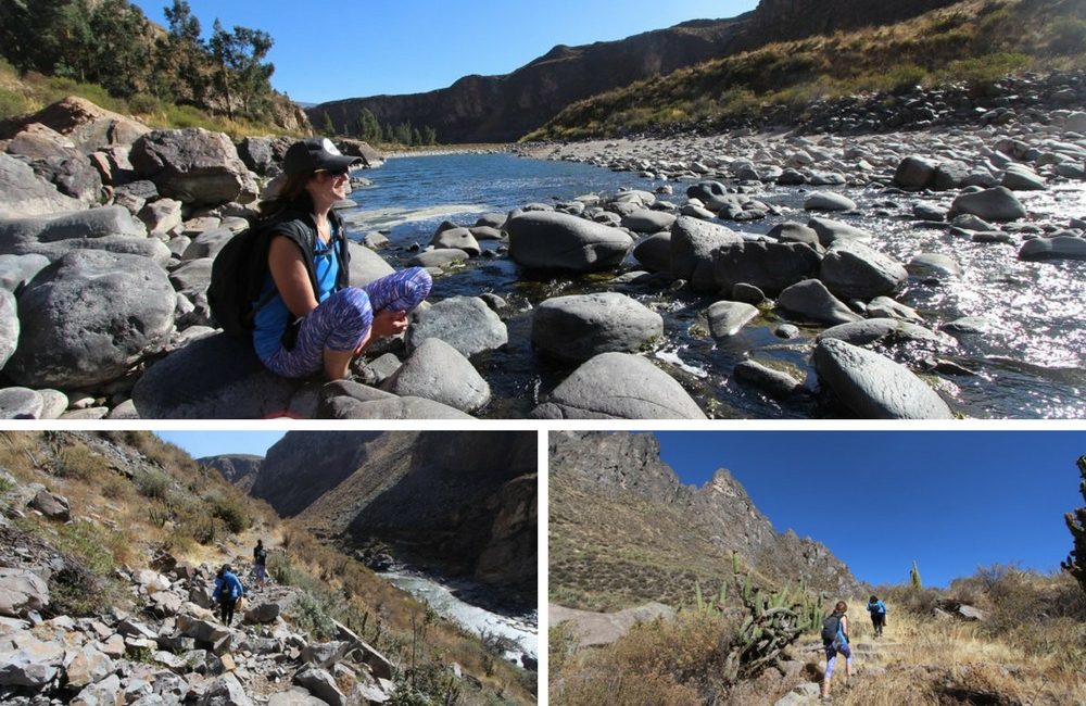 Canocota Canyon Colca Peru Hike, Aracari Travel