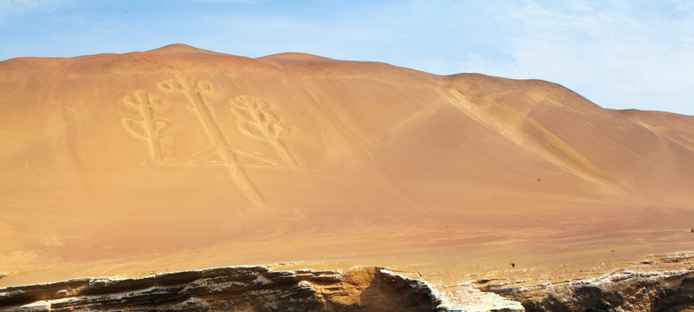highlights of paracas national reserve (1)