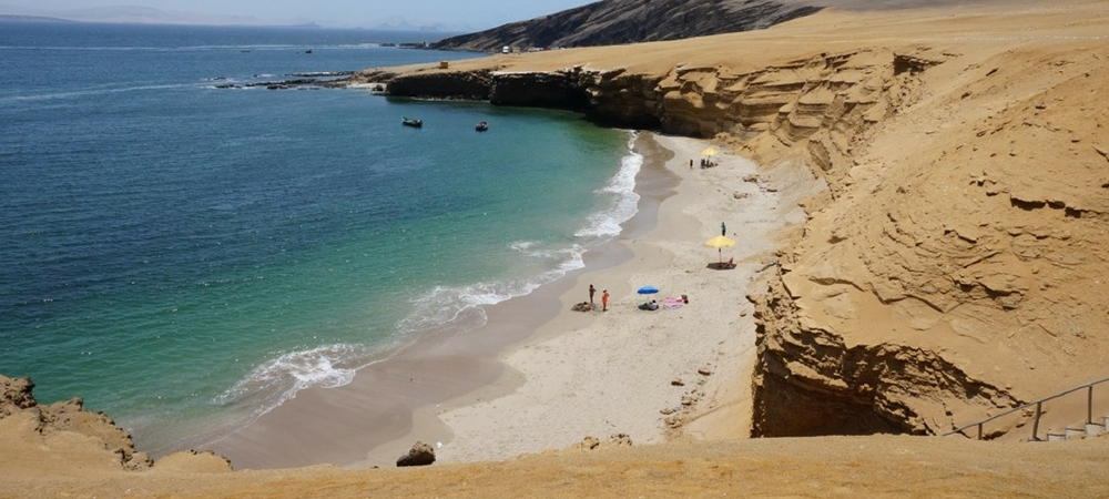 highlights of paracas national reserve (4)