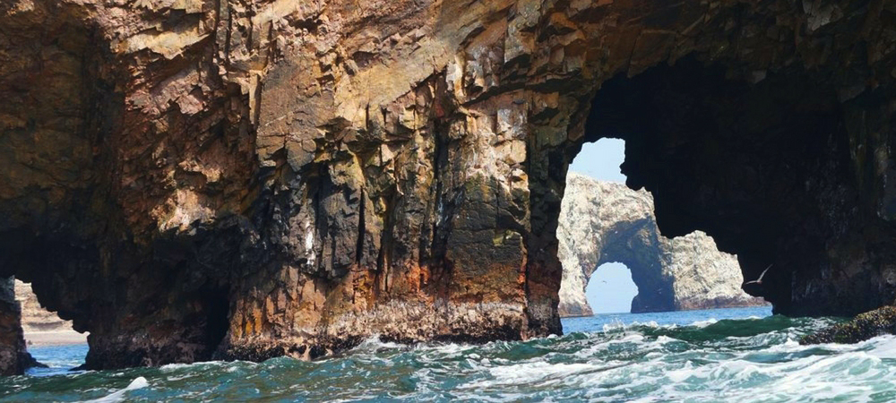 highlights of paracas national reserve (6)