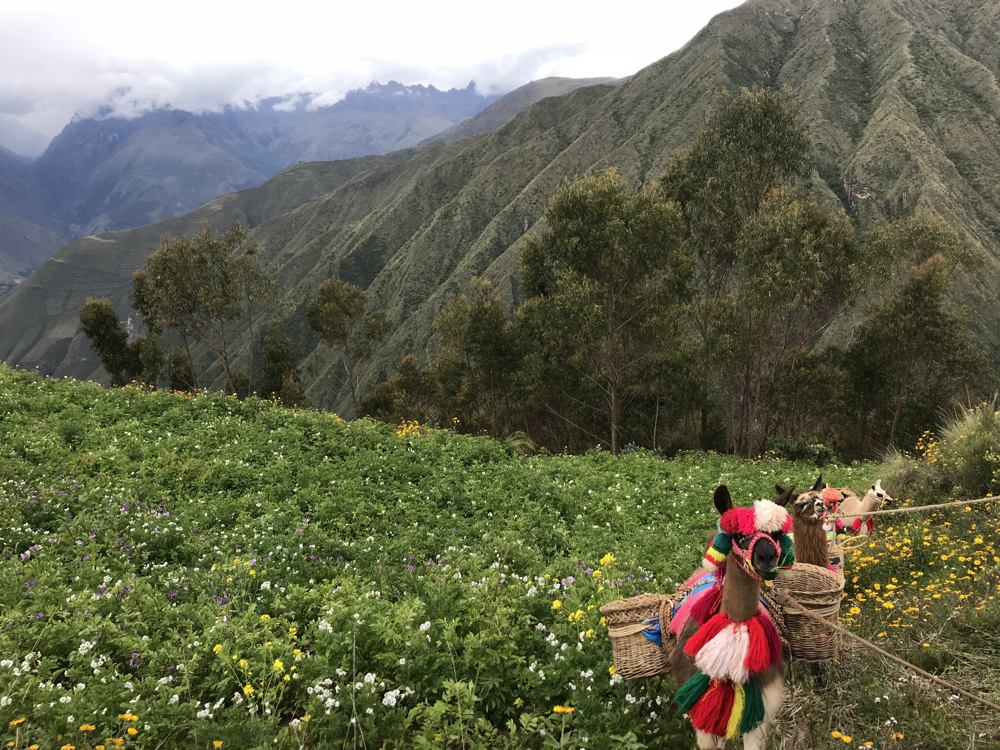 The Real Sacred Valley: Cultural Peru Hike