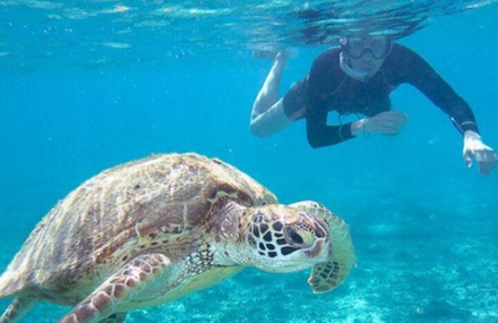 Snorkeling - Credit: Rumbos del Peru