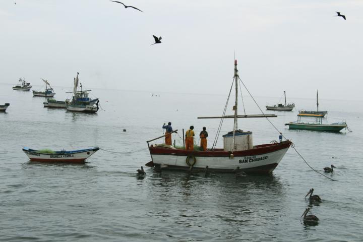 Artisan Fishing
