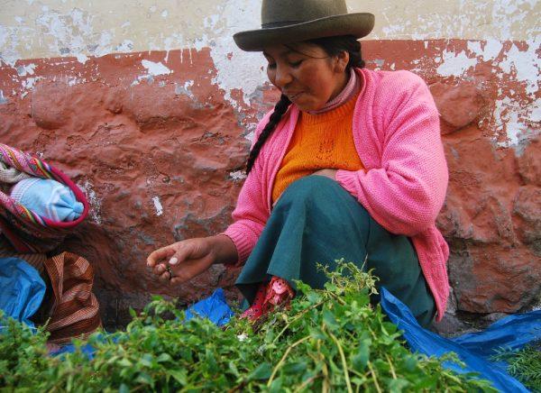 The natural wellness remedies of Peru, Aracari Travel