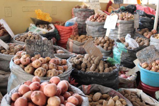 Discover Peru Through Its Food, Aracari Travel