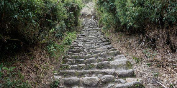How To Hike To Machu Picchu, Aracari Travel