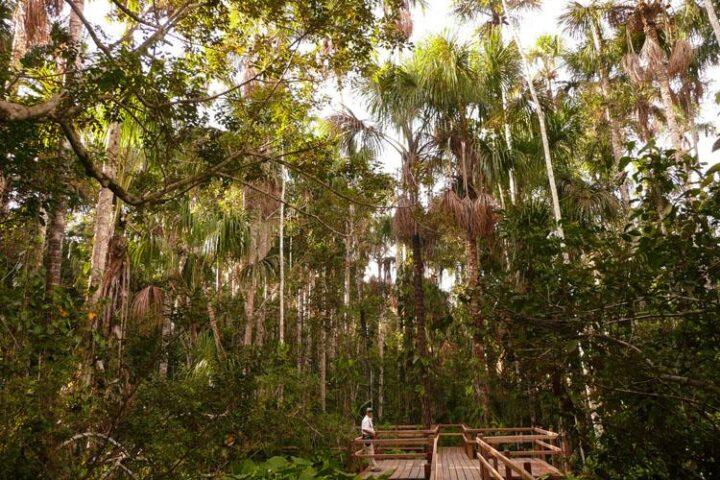 Travel with Purpose: Stories of Sustainability, Aracari Travel